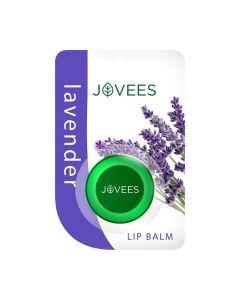 Jovees Herbals Lavender Lip Balm-5gm