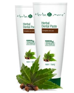 Netsurf Herbs & More Herbal Dental Paste-125 gm