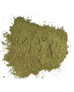 Gudmar Powder (Gurmar, Meshashringi)-100gm