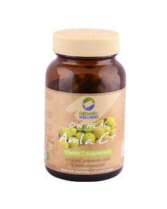 Organic Wellness Heal Amla C+Vitamin C Supplement-90 Capsules